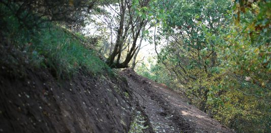 Struer Nyheder Struer Mountainbike bane